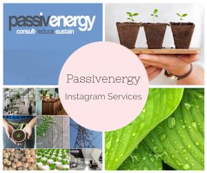 Instagram Services - Passivenergy